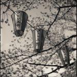 Hiroshi Watanabe, Atore Ueno, toned gelatin silver print