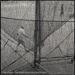 Hiroshi Watanabe, Baseball Ground, toned gelatin silver print