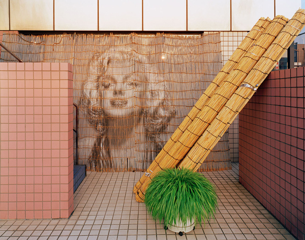 Marilyn Monroe, Robert Voit